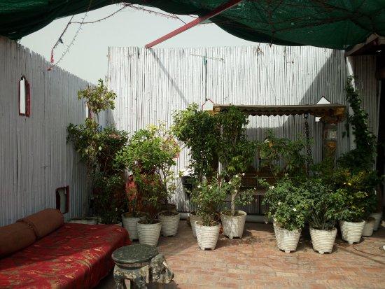 Shanti Home: Terrace garden