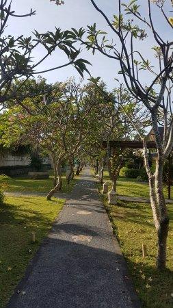 Hotel Vila Ombak: 20160905_080325_large.jpg
