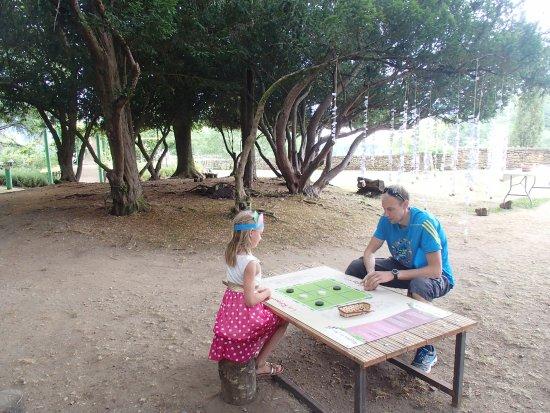 Limeuil, Frankreich: Jeux de société au milieu du parc