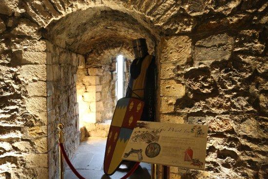 Kilkenny, Irlanda: Interni del Castello