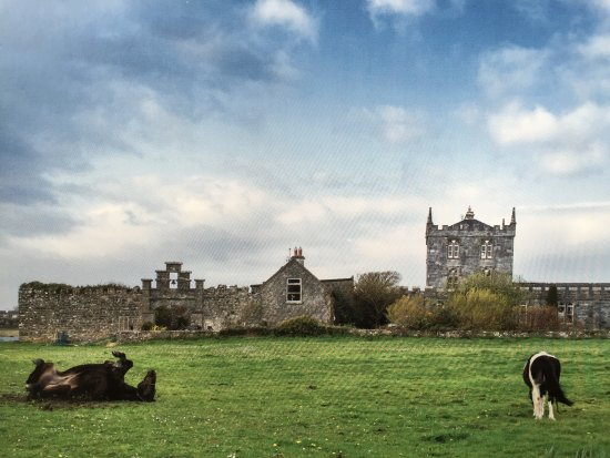 Kilcolgan Castle Updated 2017 Guesthouse Reviews Galway