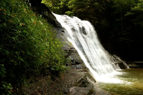 Stony Brook State Park: The last of the large falls