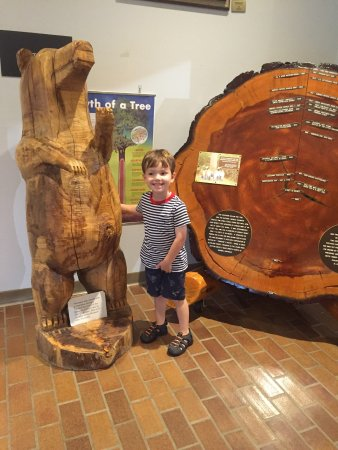 Arkansas Museum of Natural Resources: Fun at the Natural Resources museum!