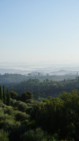 Tenuta Sant'Ilario: view from the room