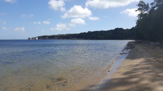 The Bankes Arms Country Inn: The local beach - more like the Caribbean than Dorset
