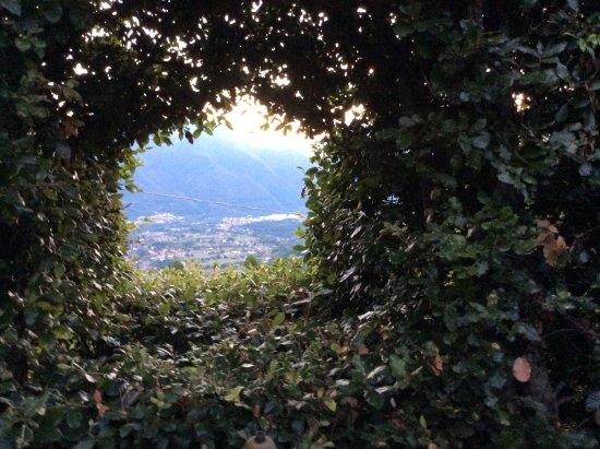 Coreglia Antelminelli, Italy: From the garden