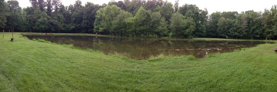 Monroe, VA: Fishing Pond