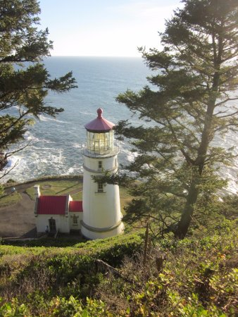 Florence, OR: From trail above lighthouse