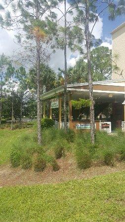 Lehigh Acres, FL: 20160910_120954_large.jpg