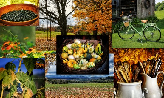 Danville, VT: Fall around The Olde Farm House 1804