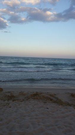 Hotel Laguna Beach: такое там клевое море=)
