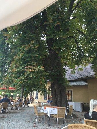 Reichenau an der Rax, Austria: photo4.jpg