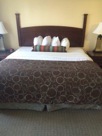 Staybridge Suites Elkhart North: photo1.jpg