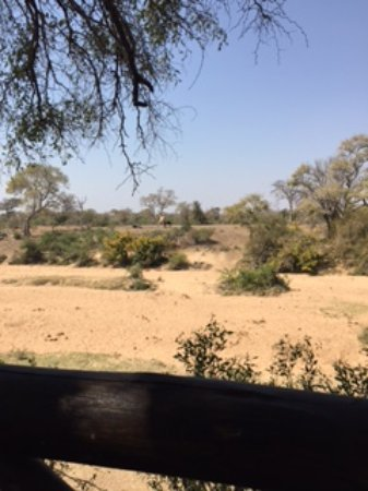 Timbavati Private Nature Reserve, Sudáfrica: View of watering hole from Camp bar/lounge