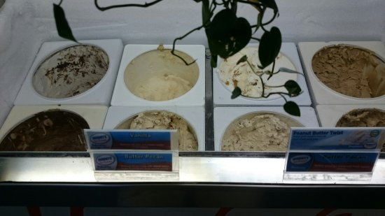 Waynesboro, Pensylwania: Just a quick photo of a few of the ice cream choices.