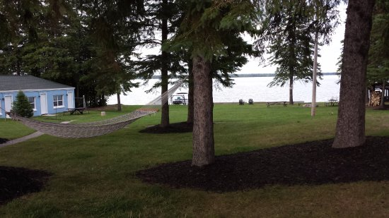 Presque Isle, MI: Hammock and back of property