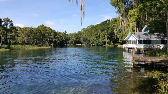 Dunnellon, FL: Looking down the rainbow river