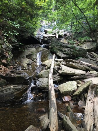 Lye Brook Falls: photo1.jpg
