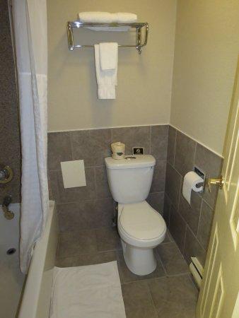 Comfort Inn Toronto Airport: Bathroom