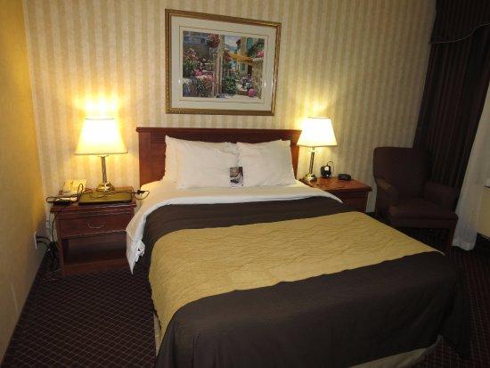 Comfort Inn Toronto Airport: Bed