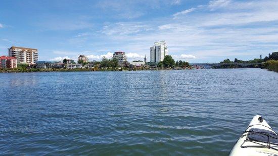 Hotel Dreams Valdivia: vista desde el rio valdivia