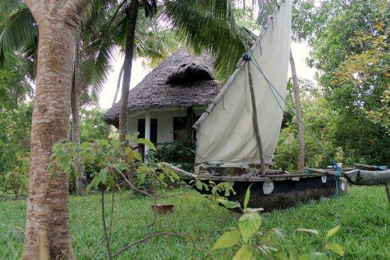 Imagen de Mangrove Lodge
