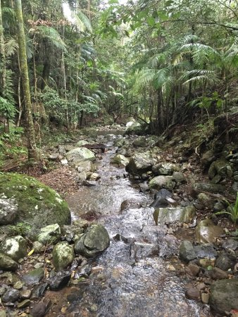 Upper Crystal Creek, Australien: photo2.jpg
