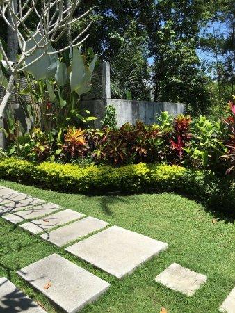 The Samaya Bali Ubud: photo1.jpg
