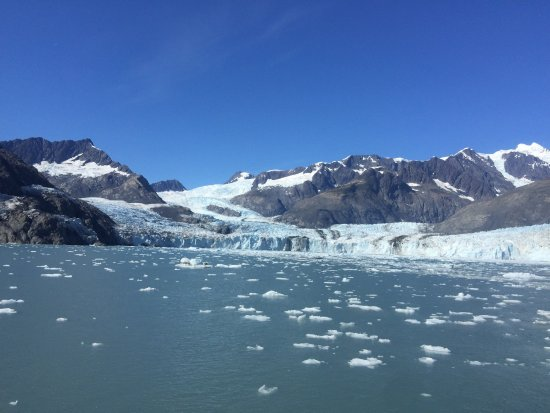 Columbia Glacier: photo5.jpg