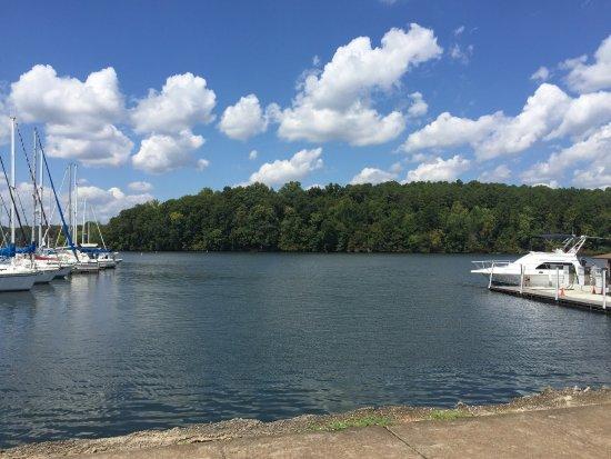 Rogersville, Алабама: photo1.jpg