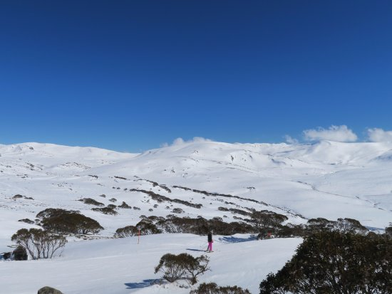 Charlotte Pass Ski Resort: 景色の様子