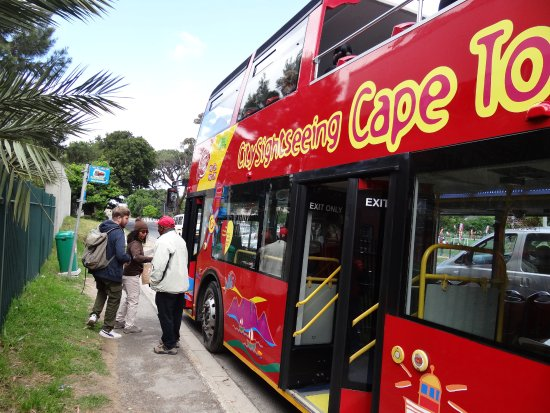 Khayelitsha, Republika Południowej Afryki: HOHO Bus Tour Guide - Imizamo Yethu Township