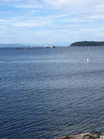 ECHO Leahy Center for Lake Champlain: photo3.jpg