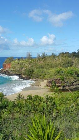 National Tropical Botanical Garden: Where the garden meets the coast