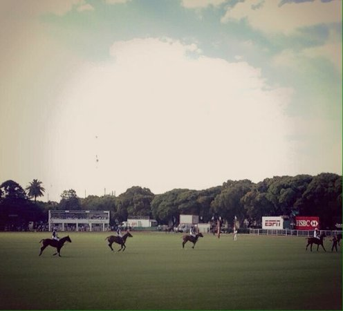 Campo Argentino de Polo: photo3.jpg