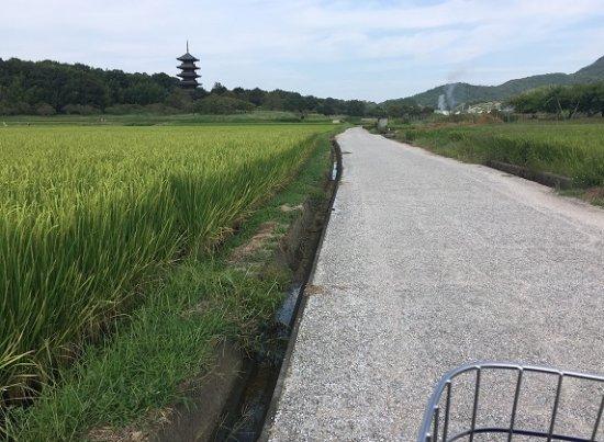 Okayama Prefecture Photo