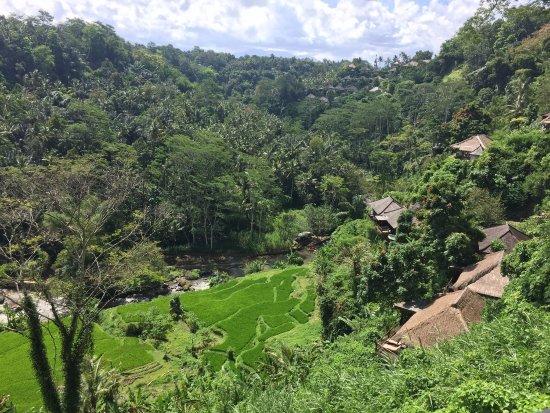 Puri Bunga Resort and Spa: photo5.jpg