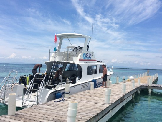 Hopkins, Belize: Belize Underwater Dive Boat