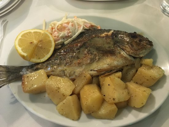 Belmo Palace: Food, seabass and seabream
