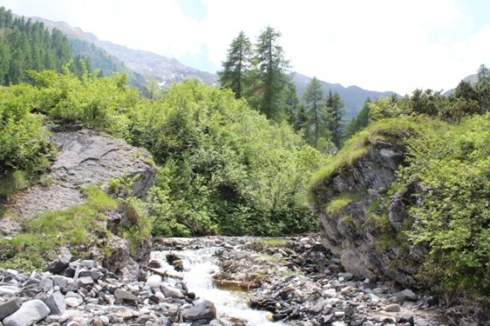 Breguzzo, إيطاليا: Lungo il sentiero