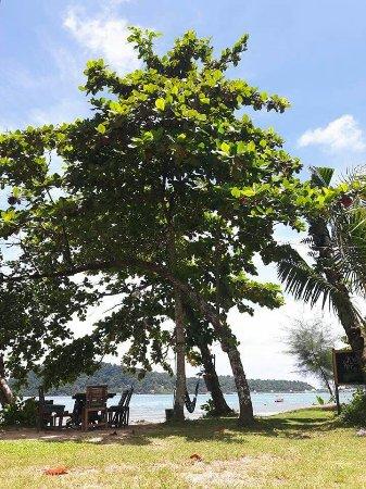 Klong Kloi Cottage: อีกครั้งที่ได้มา ถึงเเม้ที่นี้จะติดต่อ ยากไปนิด หมายเลขที่โทรได้มีเพียง039-558169 เท่านั้น และ k