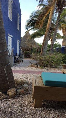 Blachi Koko Apartments Bonaire-billede