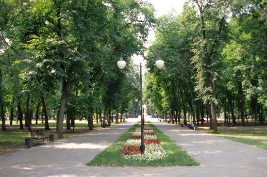Park Orlenok