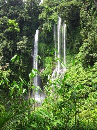 Kerobokan, Indonésie : Beatiful Bali Island