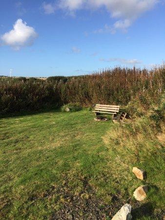 Llanreithan, UK: photo3.jpg