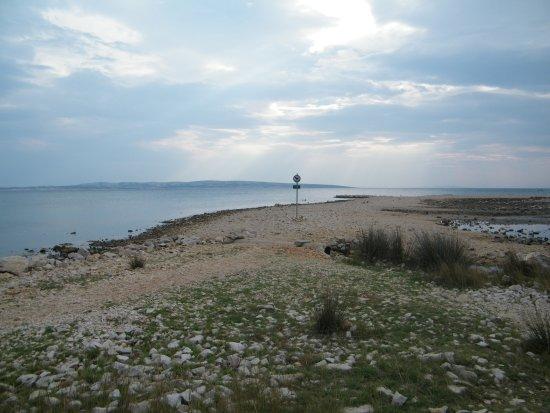Povljana, Croatia: pláž pro psy v Povljaně