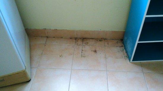 Laem Set, Tailandia: Der Bungalow war leider etwas schmutzig.