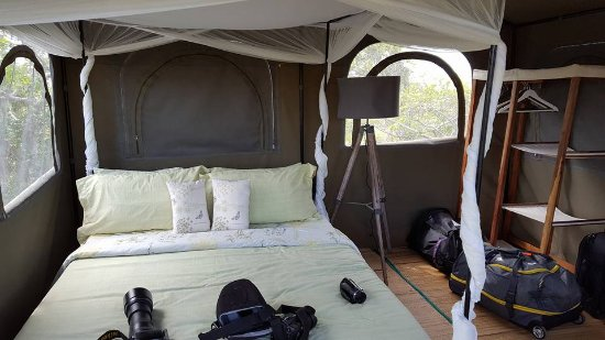 Saadani National Park, แทนซาเนีย: Bedroom above landrover