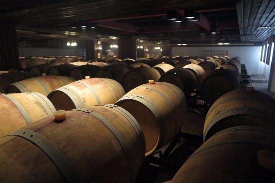 Hansen Wine Fazenda: Wine cellar in basement