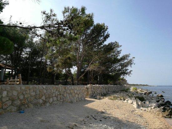 Mandre, Kroatia: IMG_20160911_130849_large.jpg